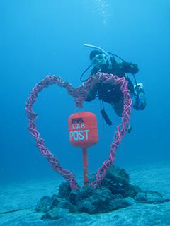 IOP水中ポスト バレンタインバージョン