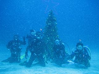 水中クリスマスツリー