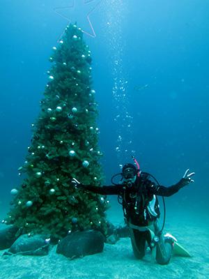 IOP水中クリスマスツリー